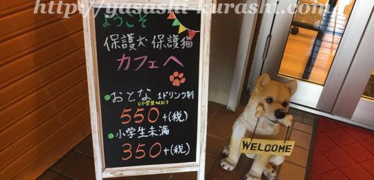 保護犬カフェ,保護猫,里親、里親募集