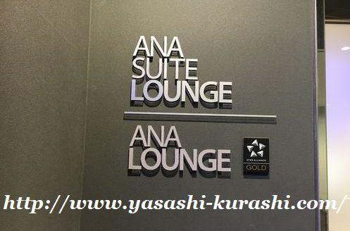 東京ディズニーリゾート,ディズニーランド,ディズニーシー,春休み,旅行,ANA欠航