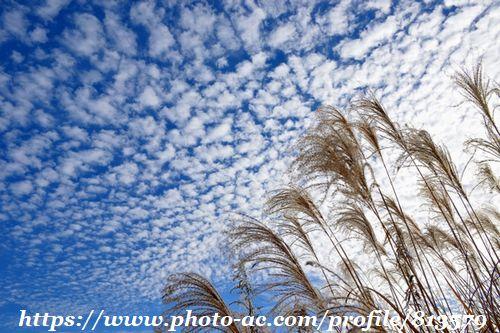 夕焼け,雲,空,写真,秋の空,うろこ雲