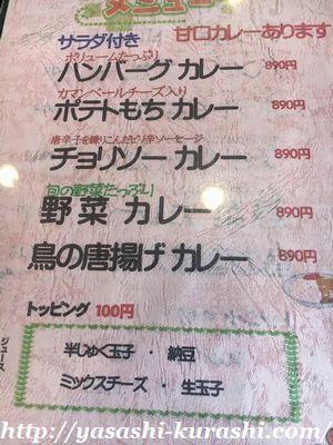 屋久島,ランチ,オススメ,カレー,ハイビスカス