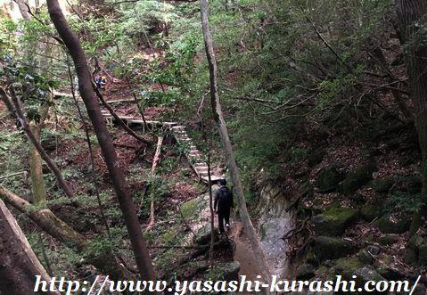 屋久島,世界遺産,縄文杉,縄文杉登山,雨,登山弁当,登山道