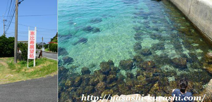 屋久島,大川の滝,屋久島ライン,緑の回廊,恵比寿展望処