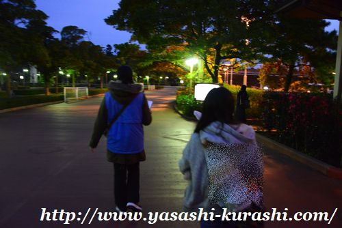 東京ディズニーシー,東京ディズニーリゾート,TDR,クリスマス,女子旅,ダッフィー,ANAバス