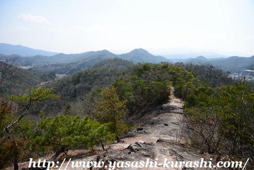 宝塚西谷の森公園,犬との定番散歩コース,ワンちゃん散歩,ハイキング,穴場スポット,犬とお出かけ,馬の背