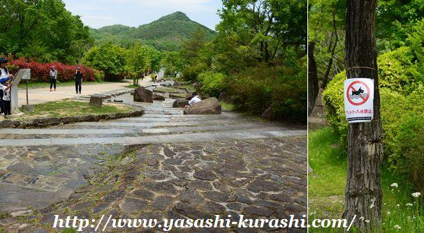 有馬富士公園,ワンちゃん連れ,あそびの王国