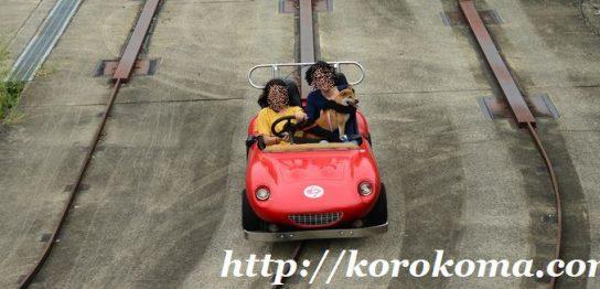 神戸フルーツフラワーパーク,無料ドッグラン,ゴーカート,ワンちゃんと一緒にゴーカート