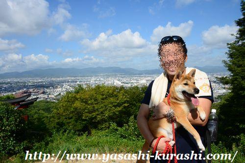 伏見稲荷大社,千本鳥居,ワンコと一緒,犬連れ,ペット連れ