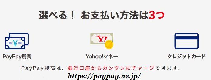 ペイペイ,ぺいぺい,paypay,電子マネー,20%還元