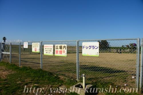 堺公園,海とのふれあい広場,ドッグラン,無料,堺浜ドッグラン,海のドッグラン