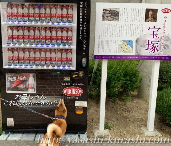 ウィルキンソン,宝塚発祥,ウィルキンソン記念館,ウィルキンソン自動販売機