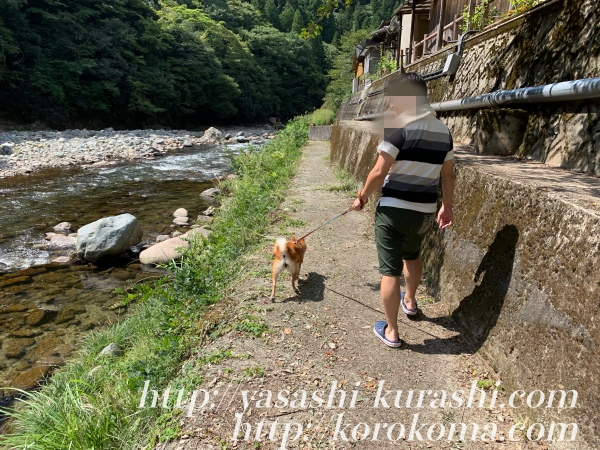 道の駅ちくさ,わんことくつろぐ,犬連れに優しい,ワンコファースト,ドッグラン,ドッグカフェ,川遊び,デイキャンプ],BBQ
