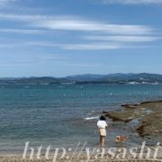 ペット可海水浴場,和歌山海水浴場,ペットOK,江津良海水浴場
