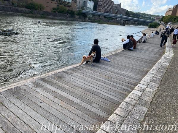 宝塚ファミリーバーガーランド