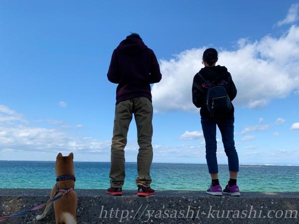野島スコーラ,野島小学校跡,淡路島