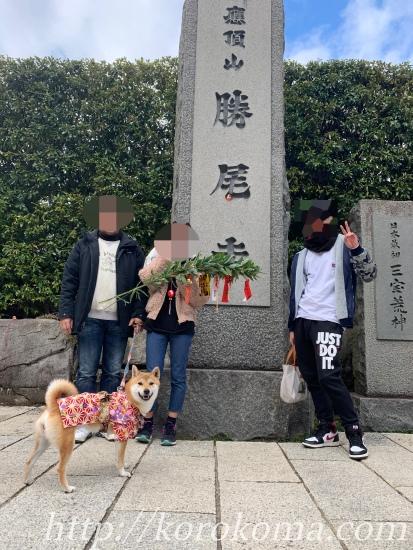 勝尾寺,初詣,犬連れ,ワンコok,勝ち運の寺,わんちゃんok