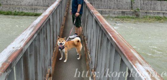 西宮生瀬,水道管メンテナンス,細い橋
